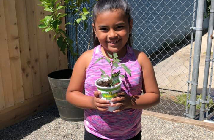 Happy young little kid girl holding a plant in a plastic pot at A Preschool & daycare Serving Armona, CA